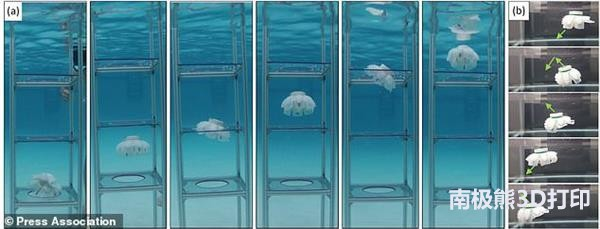 3d-printed-jellyfish-robots-created-to-monitor-fragile-coral-reefs-2.jpg
