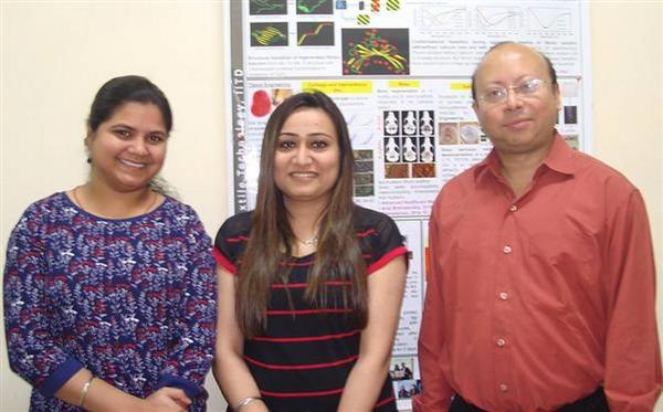 indian-researchers-3d-bioprint-load-bearing-bones-1.jpg